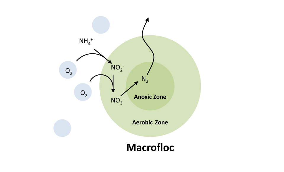 Macroflac - NITRATE NEUTRALITY SOLUTION